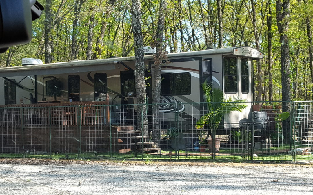 The little blog about trees and RVs
