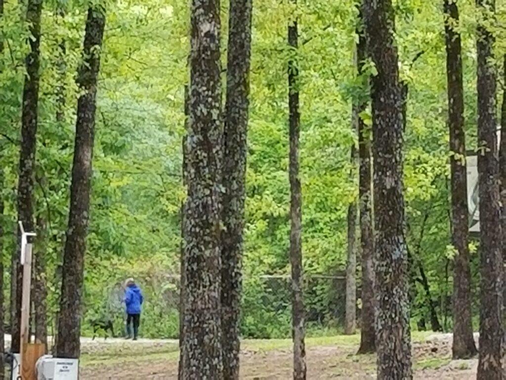 Walking Dog at RV Park